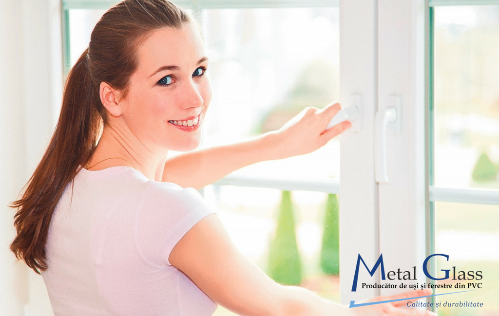 Professional help for choosing windows with double-glazed windows